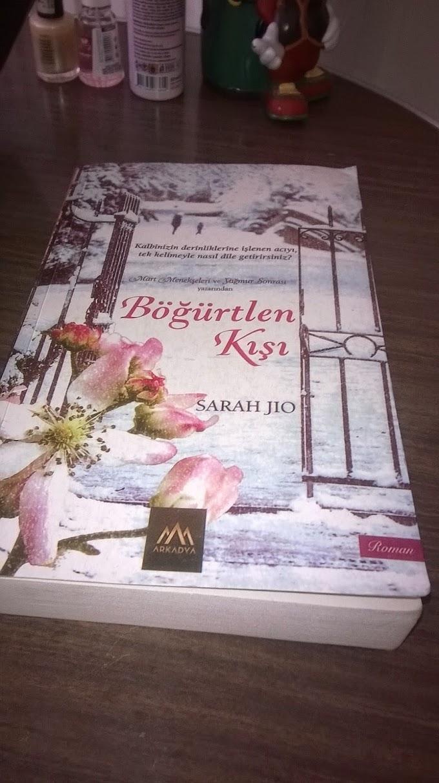 Ne Okudum #12: Böğürtlen Kışı/Sarah Jio