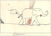 Ivan's Elephants