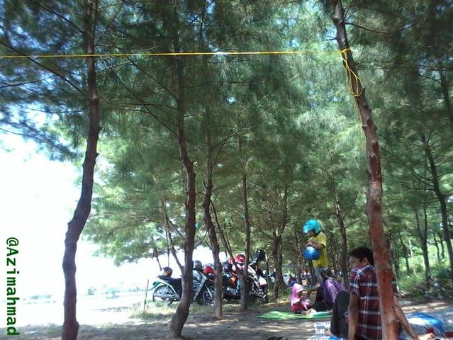 Wisata Tuban, Pantai Cemara.