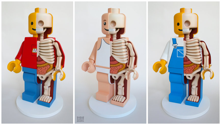 Jason Freeny: Anatomical Lego Men