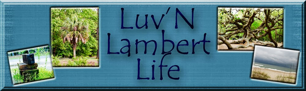 Luv'n Lambert Life