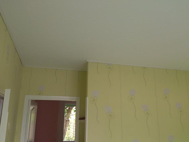 web plafond tendu