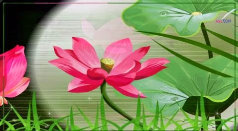 11 Style Proshow Producer HD Lotus QS