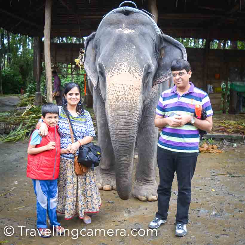 soon as we found out about my husband Alok' conference in Kerala, scheduled for December, we decided that my 9-year-old son, Nishant, and I will also accompany Alok and make it a work plus leisure trip. We planned to extend the stay to 5 days, out of which one day would be reserved for my husband's conference (we could still do some sightseeing in Kochi though) and the rest of the days could be used to explore Kerala a little. I wished we could extend it further, but both my and my husband's jobs don't allow us to take so many leaves. This is one of the disadvantages of being doctors.We reached Kochi early morning on December 4, 2016 and checked into Le Meridien, where the conference was to be held. Since my husband's lecture was scheduled for the next day, we decided to utilize the day and take a day tour on a houseboat through the backwaters. We boarded the houseboat from Alleppey and relaxed as the boat navigated the still waters. We sailed through paddy fields, quaint villages, mesmerizing skylines, and stunning landscapes. The houseboat was almost like a floating house. It had a bedroom, a dining room, a dock, and a clean western style washroom. Apart from the person who was steering the boat, there was a cook too and he cooked delicious Kerala food for us as we travelled. It was pure luxury, sitting on the dock and being served hot, aromatic curry.Before we boarded the houseboat, we were worried that it might get boring for our son, all that sitting around doing nothing. But we were wrong. He enjoyed himself thoroughly and busied himself with photography.After our tour ended at 5pm, we rushed and headed straight for Allepey  beach. As we reached there, it started raining, but we were too excited to go back to the hotel so soon. My husband and I have stayed near the sea for several years, but our son was seeing it for the first time. And his reaction didn't disappoint me. I had hoped that he will be overwhelmed and excited, and there he was jumping through the water, running to meet the waves. I was happy to see the sea, but I was happier because of my son's reaction to it. He did not get enough of the beach that day so the next day, before Alok's lecture, we went to Fort Kochi beach for a little while during the day so that we could be back in time for his lecture in the evening. Kochi is like any other city. We stayed away from the tourist spots, but explored markets, streets, and eateries. After the lecture we had dinner at the hotel and turned in early because we had to check out and leave for Thekkady the next day. We had booked the KTDC guest house inside the Periyar Wildlife Sanctuary for the next night, and we were very excited about it. We had stayed inside a wildlife sanctuary once - Ghairal guest house inside Corbett Tiger Reserve - and our experience was wonderful even though the guest house was only equipped with very basic facilities. There was no electricity at night and it was pitch dark, but we had enjoyed sitting outside our room and watching fireflies. The guest house inside Periyar was much better equipped, and even had a television. So we thought that the experience will be better. But this is where we were wrong.We headed out to Thekkady the next morning. The views on the way consisted predominantly of rubber tree plantations, pineapple farms, and lush green sprawling tea gardens. We also relished a freshly cut sweeter-than-sugar pineapple from one of the shops outside the pineapple farms.On the way we stopped at Kumily, a little village where we visited one of the many spice gardens. A caretaker showed us around and explained about the various spices and herbs. We  purchased some spices and other specialities of Kerala. We roamed around and met a couple of elephants, one of whom was friendly and even gave Alok a head massage. I don't think Alok appreciated it though.After this brief stop, we headed straight for Periyar, because as per our information the gates of the sanctuary were only open till 5pm. We hadn't been able to grab lunch, and we reached the sanctuary at an awkward time, at 3 pm. Our hotel wasn't able to provide us anything to eat so we rushed out again to grab whatever was available in the eateries right outside the sanctuary. The food we had had so far in Kerala had been excellent, but this was just short of disappointing. But we didn't really mind because we were excited about our stay inside the sanctuary and our early morning boat ride the next day. Little did we know that the excitement that was in store for us at both the places wasn't the kind that we had anticipated.As soon as we settled inside our room, we discovered that the place was infested with monkeys. We were forbidden from opening the balcony door and we could see why. Monkeys were everywhere. They were hanging onto our window rails in great numbers. Monkeys are not my favorite animals, but my husband and son had a gala time throwing towels and pillows at them. Only because they were sure that the monkeys couldn't get in through the windows. The food was okay but the television only had Malayalam channels set up. We played around with the settings till we could get some Hindi and English channels too. Because of the monkeys, there was no question of sitting outside and watching the fireflies. But we slept well because we still had huge hopes from our boat ride.Those who have been to Periyar Wildlife Sanctuary would know that Periyar lake is a huge water body inside the Periyar wildlife sanctuary. It is supposed to be a good place to watch wildlife, such as elephants, buffaloes, bison, and boars, from a distance. But we didn't see a thing, even though we booked the first safari in the morning, which we were told is a good time to spot wildlife. Moreover, as we had already done a day tour in the backwaters, the lake ride was very dull in comparison. To add to that, two leeches attached themselves to my legs and had their fill before we spotted them. So you can see that it wasn't fun. In fact, I wouldn't recommend Periyar to anyone who wants to see wildlife.However, in the evening we were back in Kochi and did some local shopping. We stayed in the Fort Queen hotel and left early morning to catch our flight back to Delhi. On the whole, it was an exciting trip and given a chance we would love to spend more time in all the places that we enjoyed .