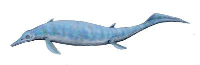 Chaohusaurus