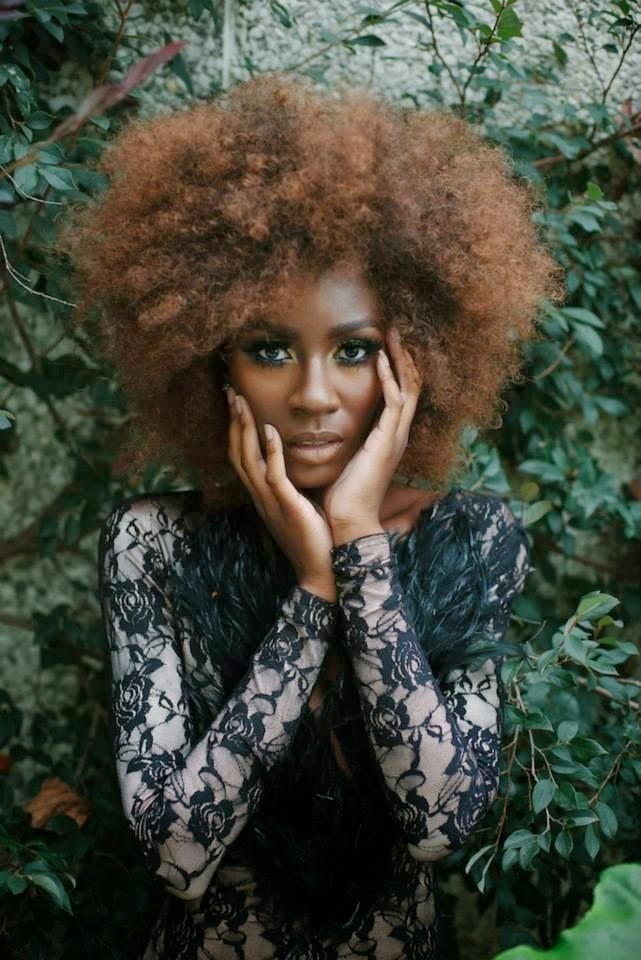 coiffures afro naturelles