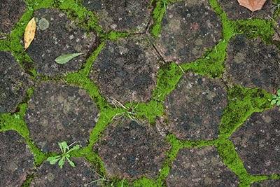 Download hexagonal tile floor
