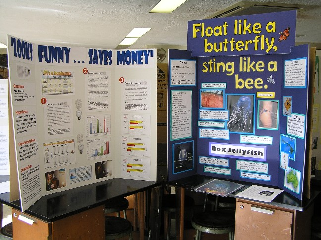 science projects for high schoolers