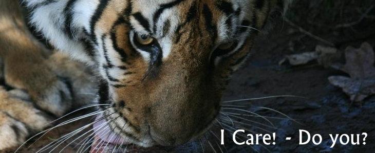 I care - Do you?