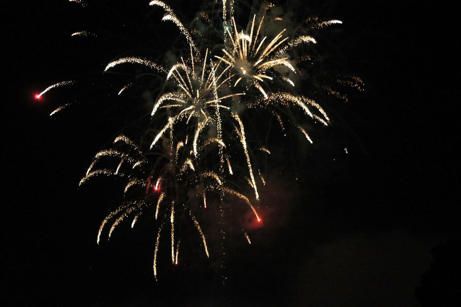 Sefton Park Fireworks Liverpool