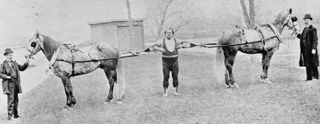 Horses pulling Louis Cyr apart