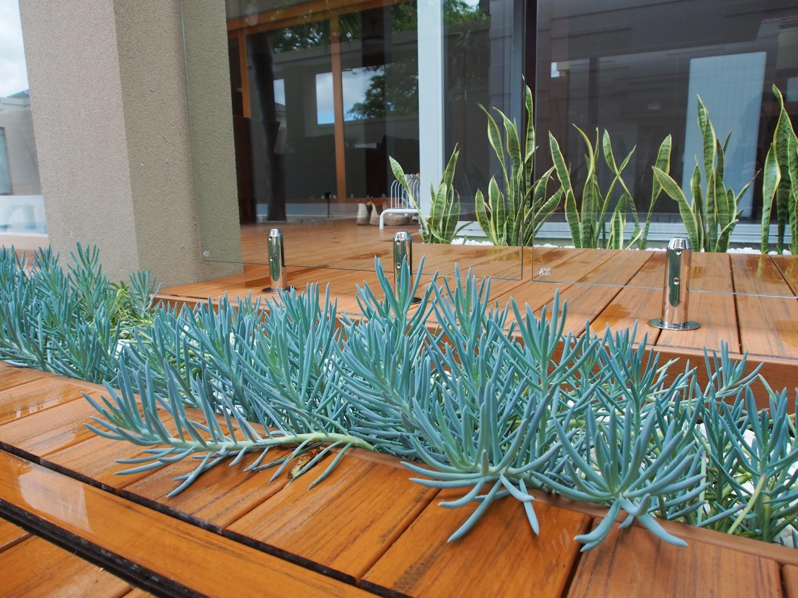 Exterior Visions Garden Design Blog November 2013