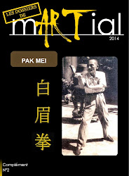mARTial N°2 : Dossier Pak Mei