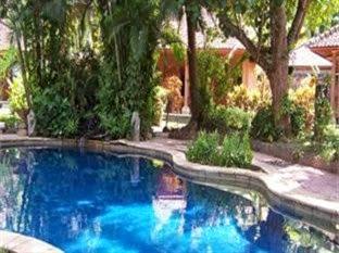 Hotel Murah Lovina - Rambutan Lovina Hotel