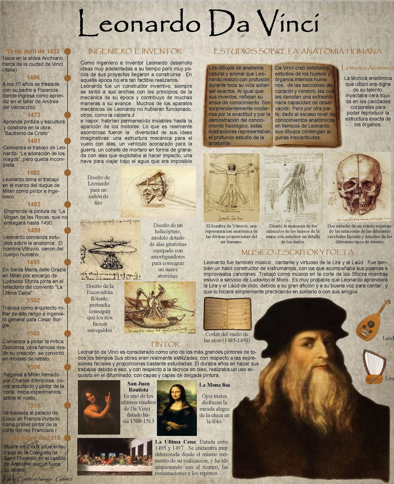 nature and function of leonardo da Leonardo da vinci's influence essay:: on the physics of nature and perspective a leonardo da vinci wrote in knowledge of the function of.