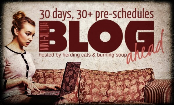 http://www.herdingcats-burningsoup.com/2014/09/sign-up-blog-ahead-nanowrimo-bloggy.html