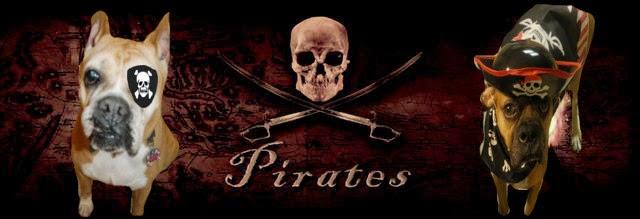 Watch Dogs  Pirate Punishment
