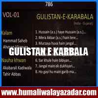 http://ishqehaider.blogspot.com/2013/11/gulistan-e-karbala-nohay-2014.html