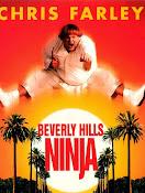 Un Ninja en Bervely Hills (1997) ()