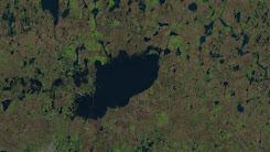 Laguna La Picasa