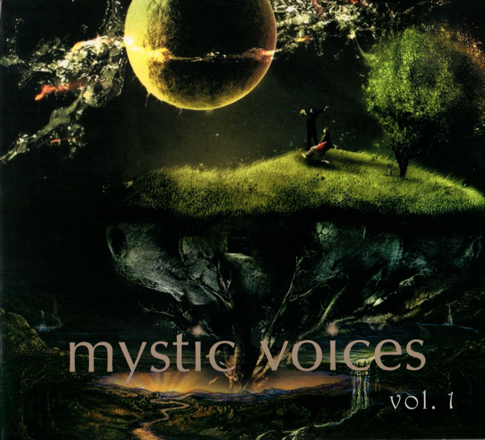 Various - New Voices Vol. 14