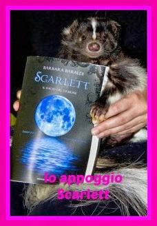 Io appoggio Scarlett di Barbara Baraldi