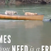 Καταπληκτικό βίντεο! Όταν τα ζώα σώζουν τα ζώα...