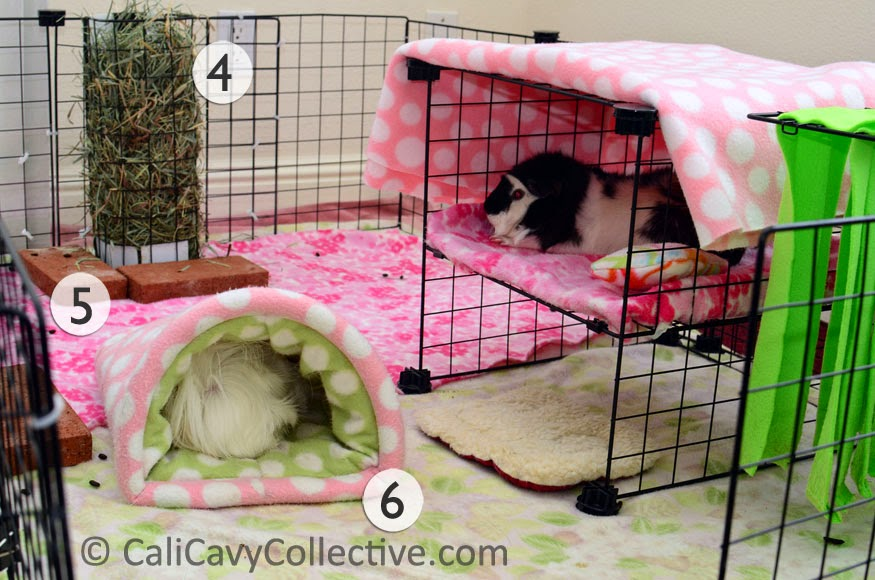 Cali Cavy Collective: a blog about all things guinea pig: Guinea Pig C&C Fleece Cage Tour
