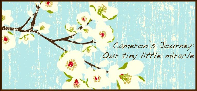Cameron's Journey