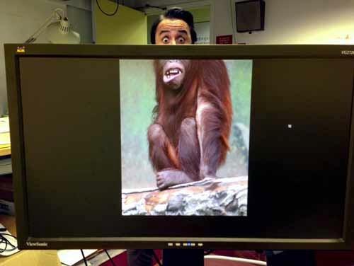 Fotografia de um monitor de computador que mostra a foto de um macaco, mas a foto mostra ele de corpo todo, menos do nariz para cima. Já atrás do monitor, um homem está olhando para o fotógrafo e se posicionou completando a foto, completando o rosto do macaco. Este site mostra fotos assim, em que no monitor do computador mostra parte do corpo de um animal, e uma pessoa posicionada atrás do monitor completa a parte do corpo que falta, quase sempre a cabeça do animal.