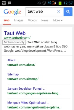 label mobile friendly oleh google pada mobile search
