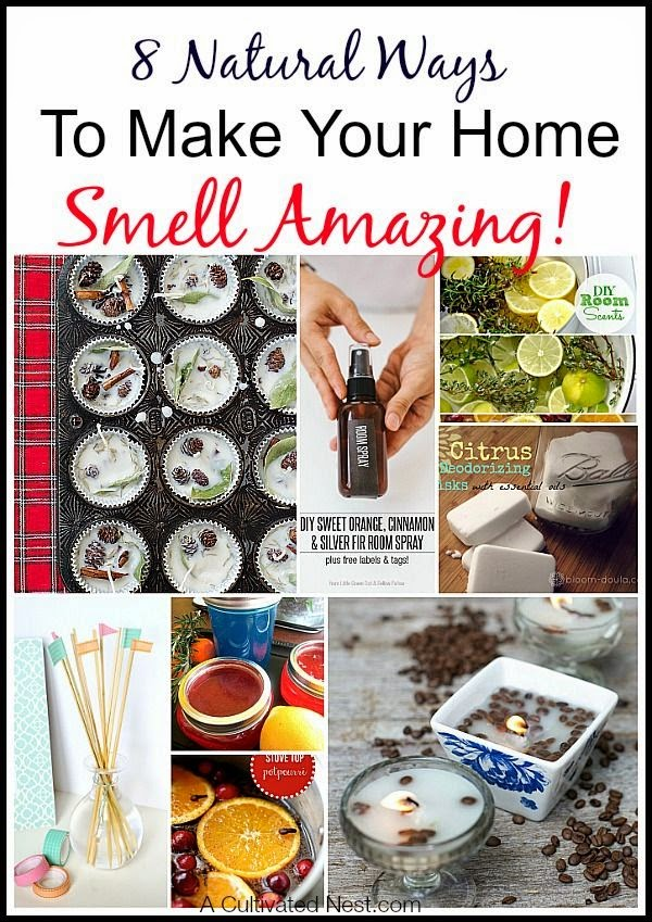Best Diy Projects 8 Natural Ways To Make Your Home Smell