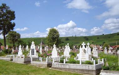 Cimitirul în iunie 2013
