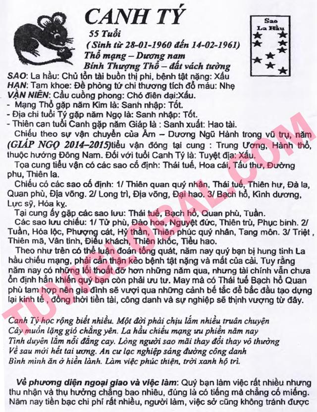 TỬ VI TUỔI CANH TÝ 1960 NĂM 2014 Giáp Ngọ