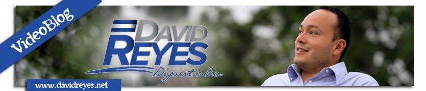 Diputado David Reyes