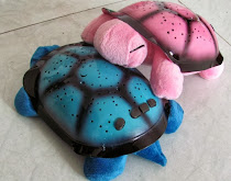 TWILIGHT TURTLE LAMP