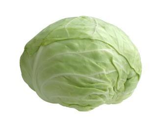 cabbag - الكرنب صيدلية طبيعية متكاملة