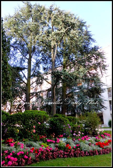 Fleurs Grand Siècle Versailles