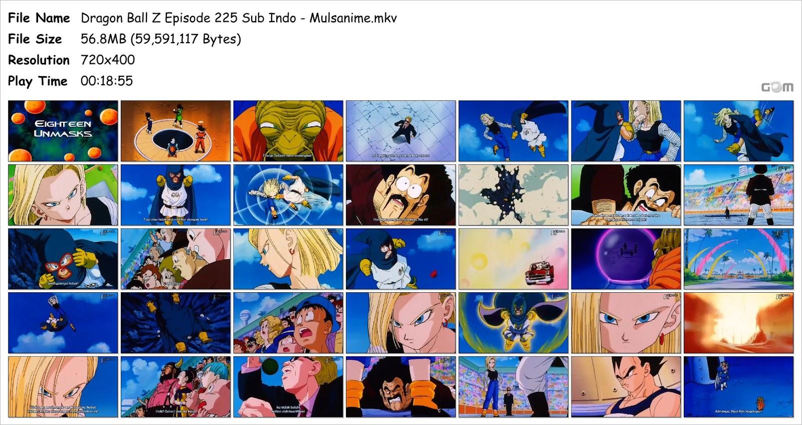 dbz episode 225