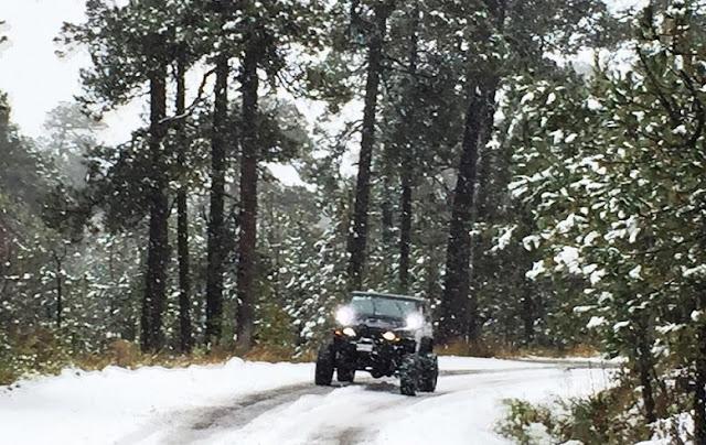 Auto en nieve