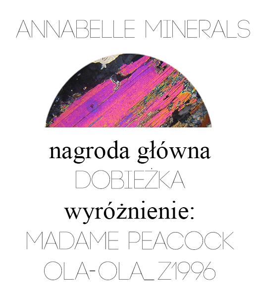 Konkurs Annabelle Minerals | Wyniki!
