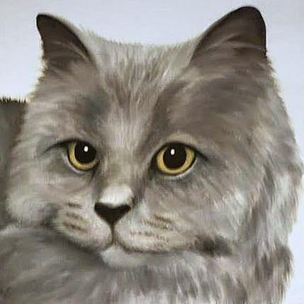 Cat Portrait of Phillip