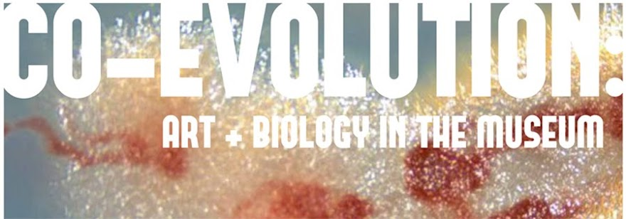CO-EVOLUTION: Art + Biology in the Museum