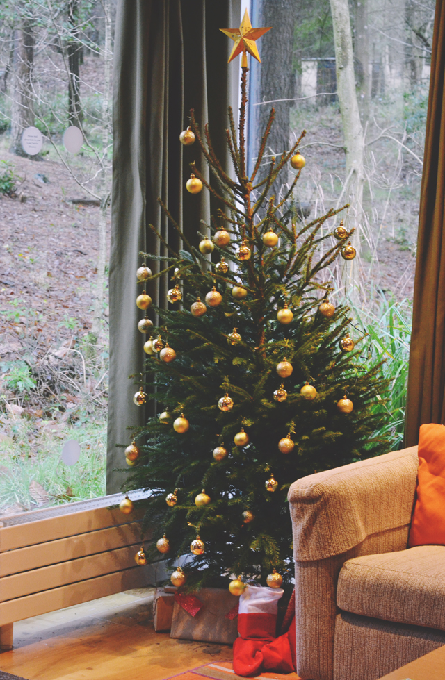 Christmas Tree in CenterParcs Lodge