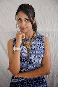Khenisha Chandran at Jaganatakam press meet-thumbnail-14