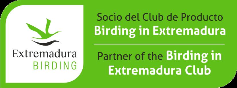 Club Birding