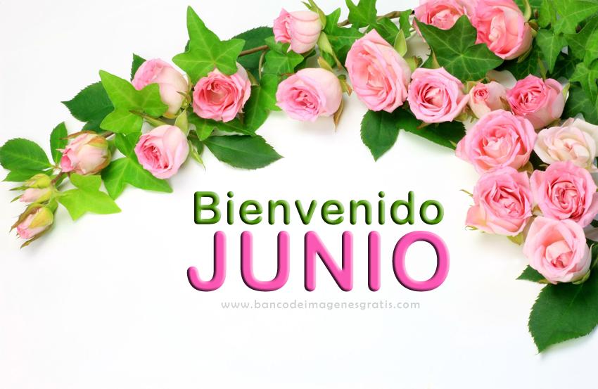 BIENVENIDO JUNIO