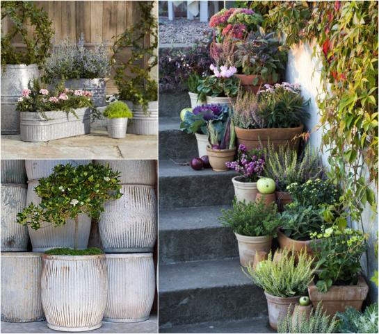 Garden Planters: Staircase Container Garden, Galvanized Tub Planters,  Vintage Zinc Barrels.