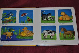Meine ersten Bilder, animale salbatice, animale domestice