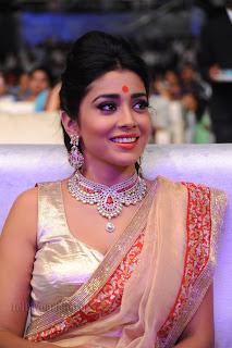 Shriya saran gorgeous Pictures 011.jpg